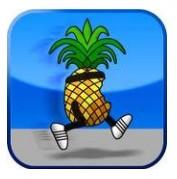 iOS 4.2.1 jailbreak